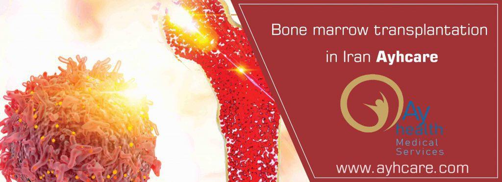 ayhcare bone marrow transplant