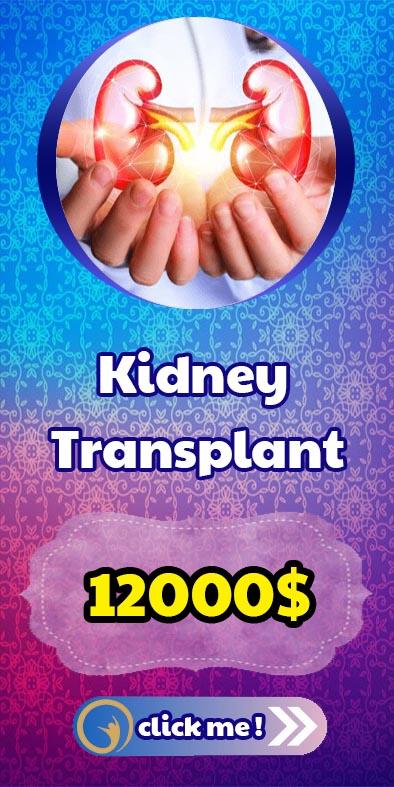 ayhcare kidney transplant